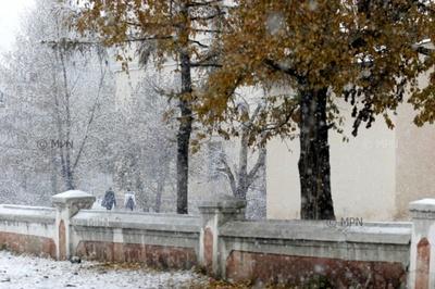 Нойтон цасны улмаас гарч болзошгүй хохирлоос урьдчилан сэргийлэхийг анхаарууллаа