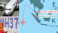 Сураггүй алга болсон онгоцыг Google газрын зураг дээр олжээ